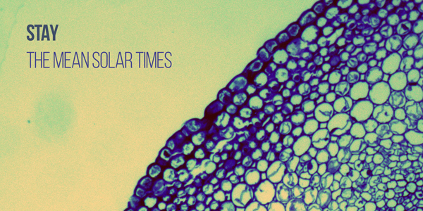Stay, 'The Mean Solar Times' review